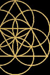 left-icon